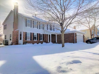 Palatine Single Family Home For Sale: 1543 West Edgewater Lane