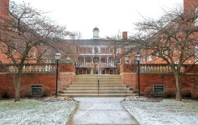 Evanston Condo/Townhouse For Sale: 336 Ridge Avenue #2