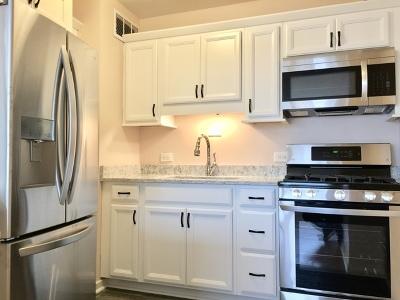 Condo/Townhouse For Sale: 1150 North Lake Shore Drive #14L