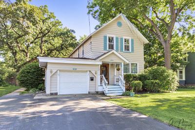 Grayslake Single Family Home For Sale: 141 Park Avenue