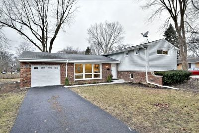 Northbrook Single Family Home For Sale: 1432 Wescott Road