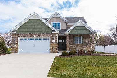 Bourbonnais Single Family Home For Sale: 1270 Eagle Bluff Drive