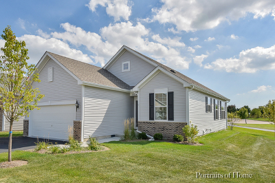 Huntley Single Family Home For Sale: 11917 Hollister Court