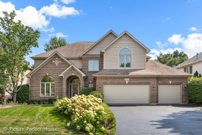 Naperville Single Family Home For Sale: 2308 Comstock Lane