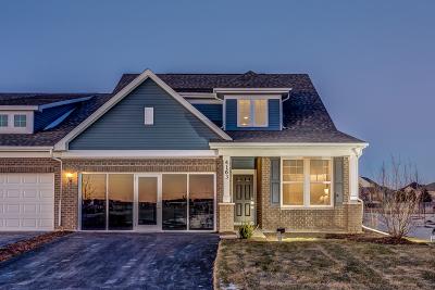 Naperville Condo/Townhouse For Sale: 4205 Lobo Lane