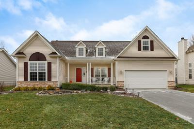 Elburn Single Family Home For Sale: 1132 Walker Court