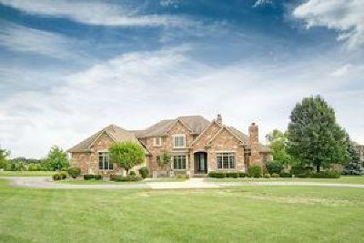 Mc Henry County Single Family Home For Sale: 7505 Vida Avenue