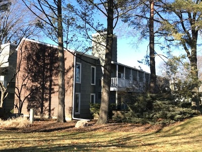 Wheaton Condo/Townhouse Contingent: 1536 Stonebridge Trail #2-3