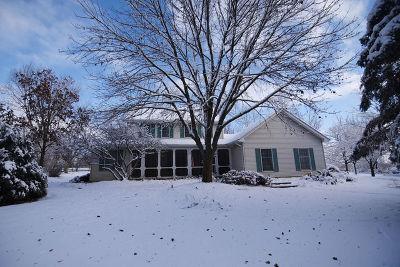 Elburn Single Family Home For Sale: 1n871 Brundige Road