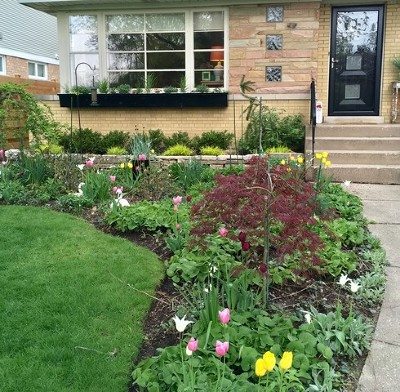 Evanston Single Family Home For Sale: 3313 Colfax Street