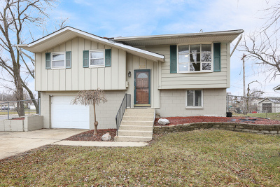 Romeoville Single Family Home For Sale: 626 Palmer Avenue