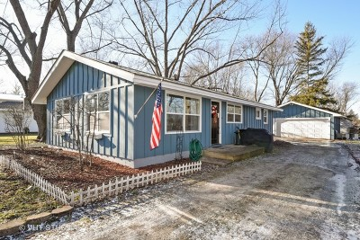 Crystal Lake Single Family Home For Sale: 100 East End Avenue