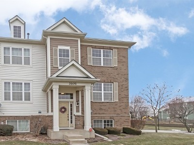 Elgin Condo/Townhouse For Sale: 3101 Valley Falls Street #3101