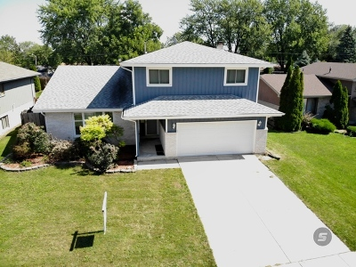 Romeoville Single Family Home For Sale: 633 Gavin Avenue