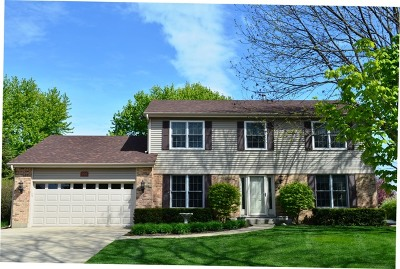 Libertyville Single Family Home For Sale: 1320 Forever Avenue