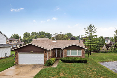 Roselle Single Family Home For Sale: 545 Lincoln Street