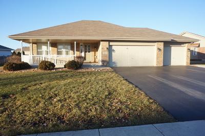 New Lenox Single Family Home For Sale: 665 Sandpiper Drive
