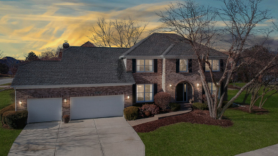 Naperville Single Family Home For Sale: 4040 Palmer Court