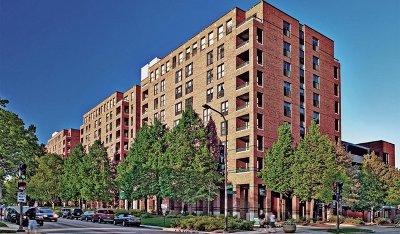 Evanston Rental For Rent: 1715 Chicago Avenue #716S