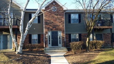 Naperville Condo/Townhouse For Sale: 1547 Raymond Drive #201