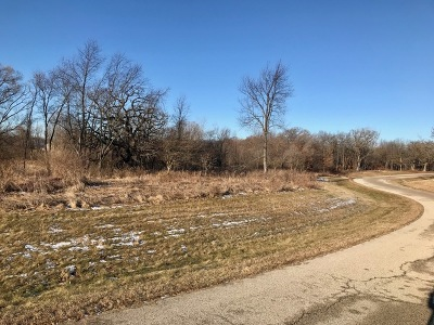 Huntley Residential Lots & Land For Sale: 11307 Robinson Drive
