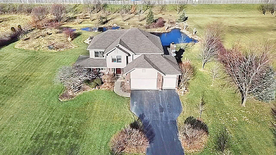 Monee Single Family Home For Sale: 6446 West Lakeway Drive