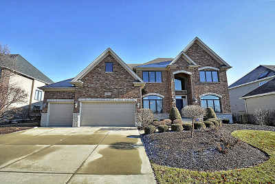Plainfield Single Family Home For Sale: 11509 Century Circle