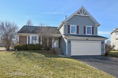 Buffalo Grove Single Family Home For Sale: 1400 Margate Drive