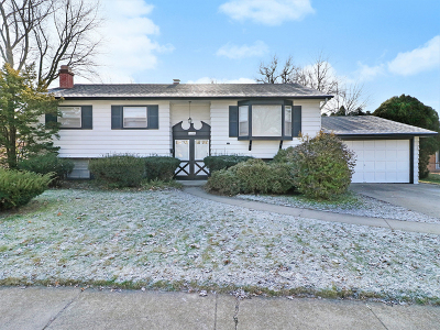 South Holland Single Family Home Re-Activated: 1253 East 156th Street