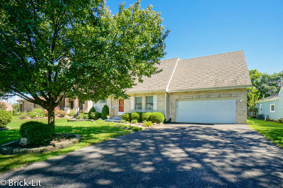 New Lenox Single Family Home For Sale: 724 South Prairie Road