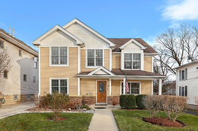 Naperville Single Family Home For Sale: 524 South Main Street
