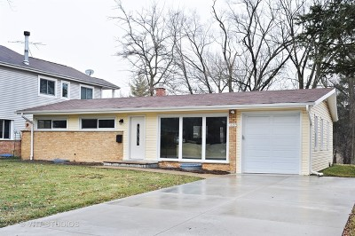 Northbrook Single Family Home For Sale: 1013 Whitfield Road