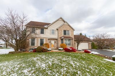 Hoffman Estates Single Family Home For Sale: 1505 Fox Path Court