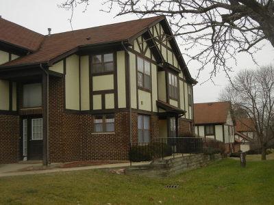 Crete Condo/Townhouse For Sale: 3413 Huntley Terrace #3413