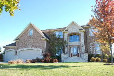 St. Charles Single Family Home For Sale: 5n815 West Sunset Views Drive