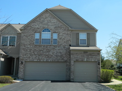 Naperville Rental For Rent: 2858 Stonewater Drive #2858