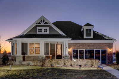 Naperville Single Family Home For Sale: 4107 Lobo Lane