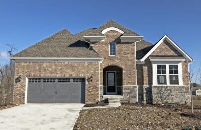 Naperville Single Family Home For Sale: 4103 Lobo Lane