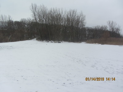 Channahon Residential Lots & Land For Sale: 24355 South Moorman Avenue