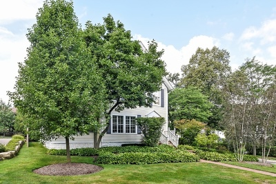 Hinsdale Single Family Home For Sale: 568 North Washington Street
