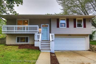 Buffalo Grove Single Family Home For Sale: 657 Bernard Drive