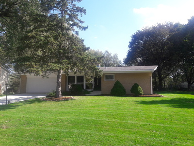 Schaumburg Single Family Home For Sale: 409 Pleasant Drive