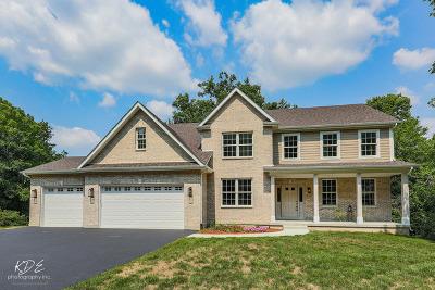 St. Charles Single Family Home For Sale: 34w576 Iowa Avenue