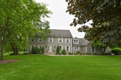 Elgin Single Family Home For Sale: 10n768 Williamsburg Drive