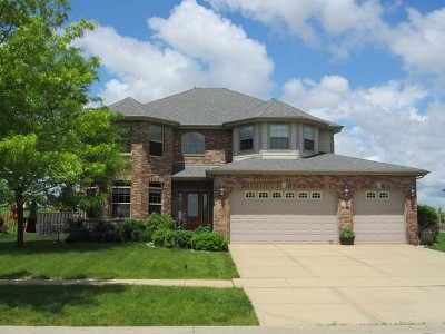 Plainfield Single Family Home For Sale: 25304 West Rock Drive