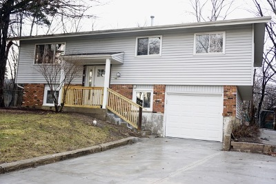 Hoffman Estates Single Family Home For Sale: 572 Durham Court