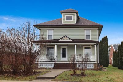 Ogle County Single Family Home For Sale: 506 South 2nd Avenue