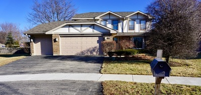 Northbrook Single Family Home For Sale: 4007 Lindenwood Lane