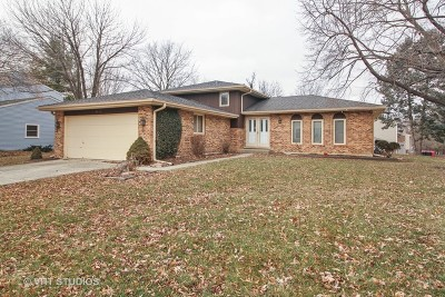 Naperville Single Family Home New: 1039 Jupiter Court