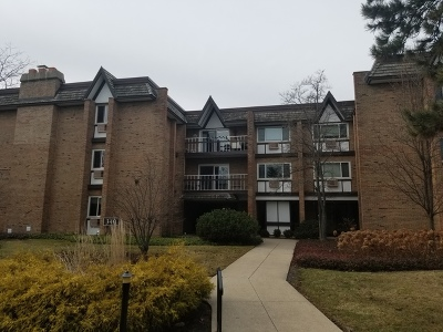 Hinsdale Condo/Townhouse For Sale: 340 Claymoor Street #2A